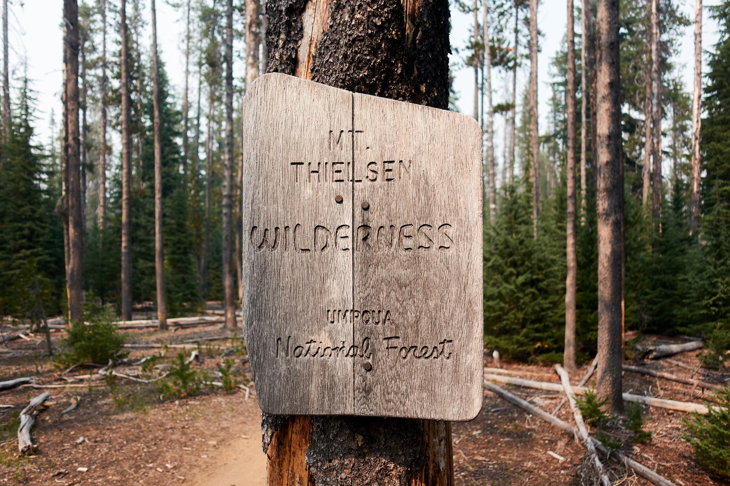 Entering Mt. Thielsen Wilderness.
