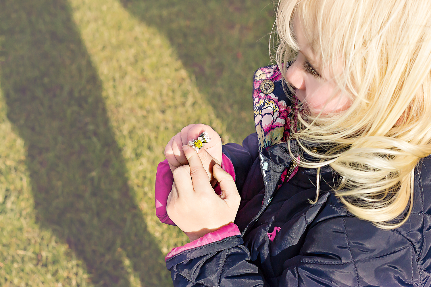 Blonde-haired girl snuggled up in her coat holding a daisy in her hands