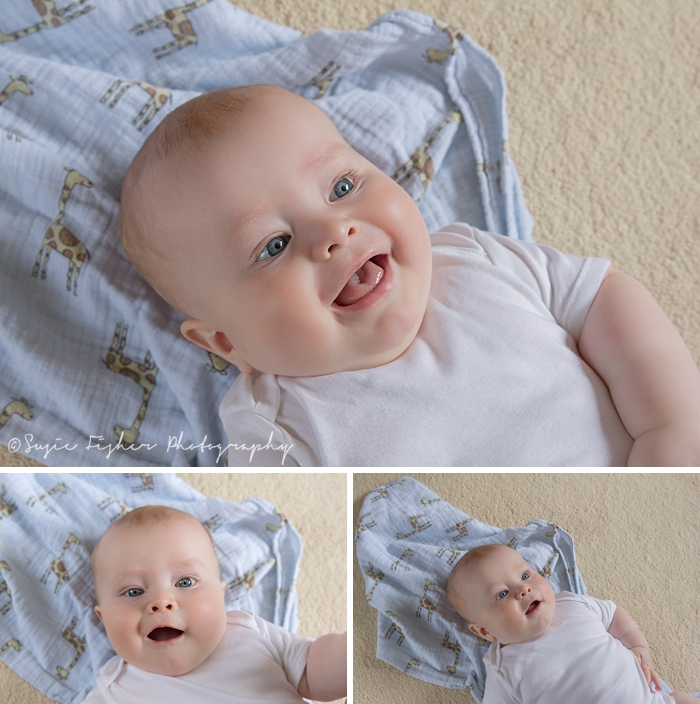 Baby-boy-professional-photographs-hartfield.jpg
