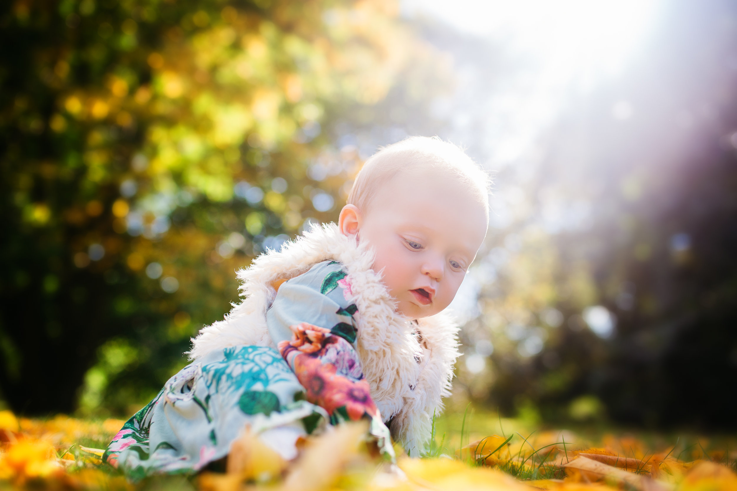 Baby Girl on Outdoor Child Photography Session, by Susie Fisher