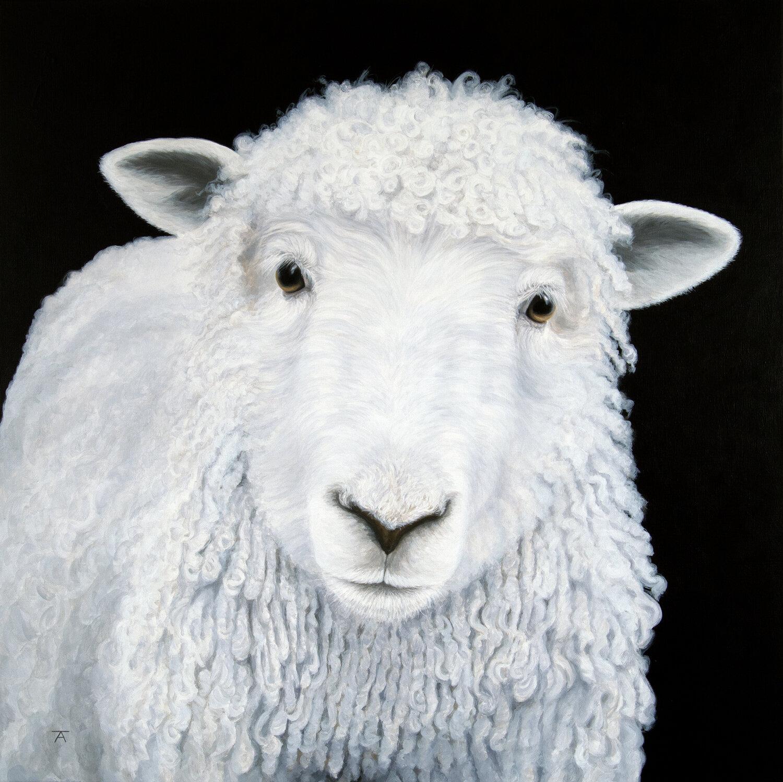 got my mind set on ewe