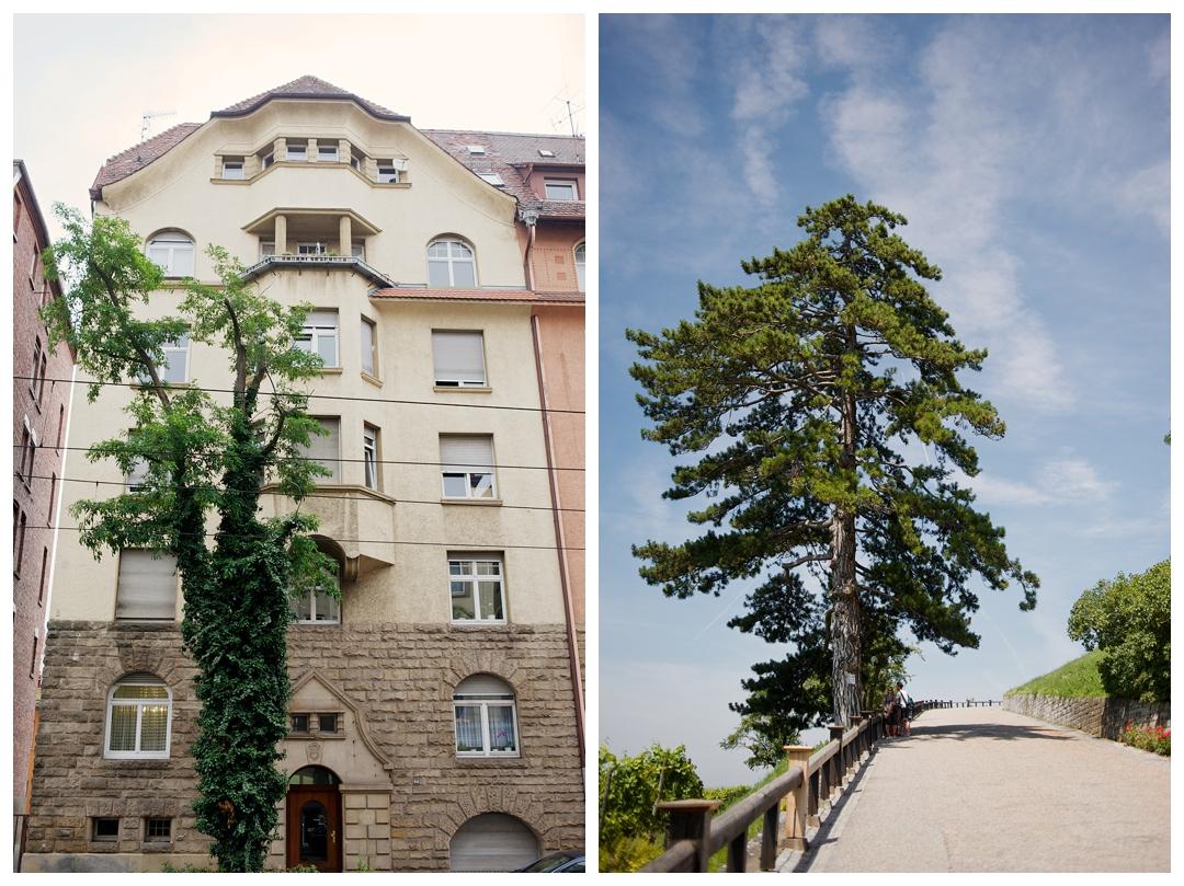BloomandLo_AtlantaPhotographer_TravelPhotographer_TravelPhotography_Stuttgart_Germany_Vineyard_Europe_AmeliaTatnall_0002.jpg