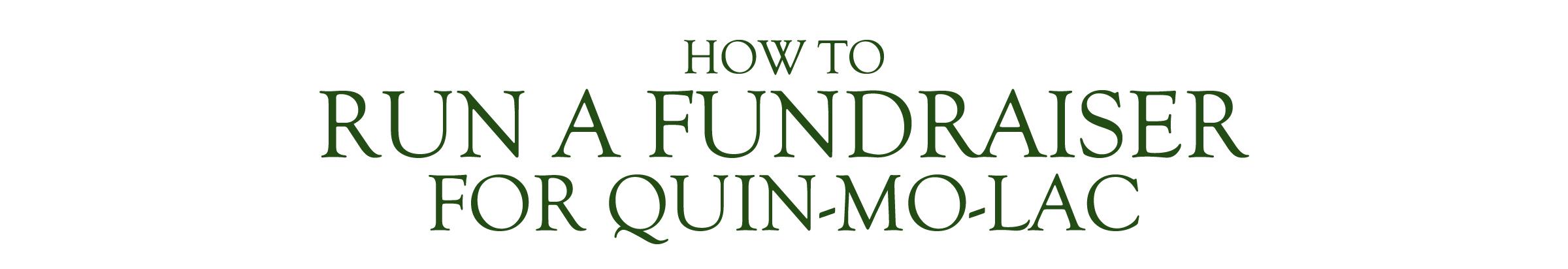 WEBSITE - HOW TO RUN A FUNDRAISER Header.jpg