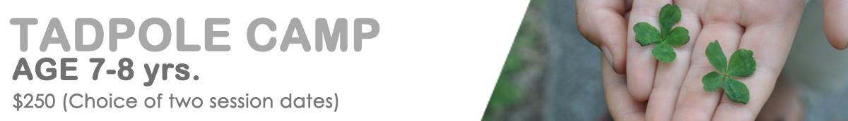 header - TADPOLE Camp 2018.png