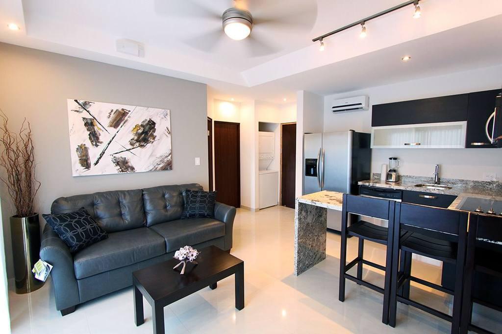 1BR kitchen suite living area.jpg
