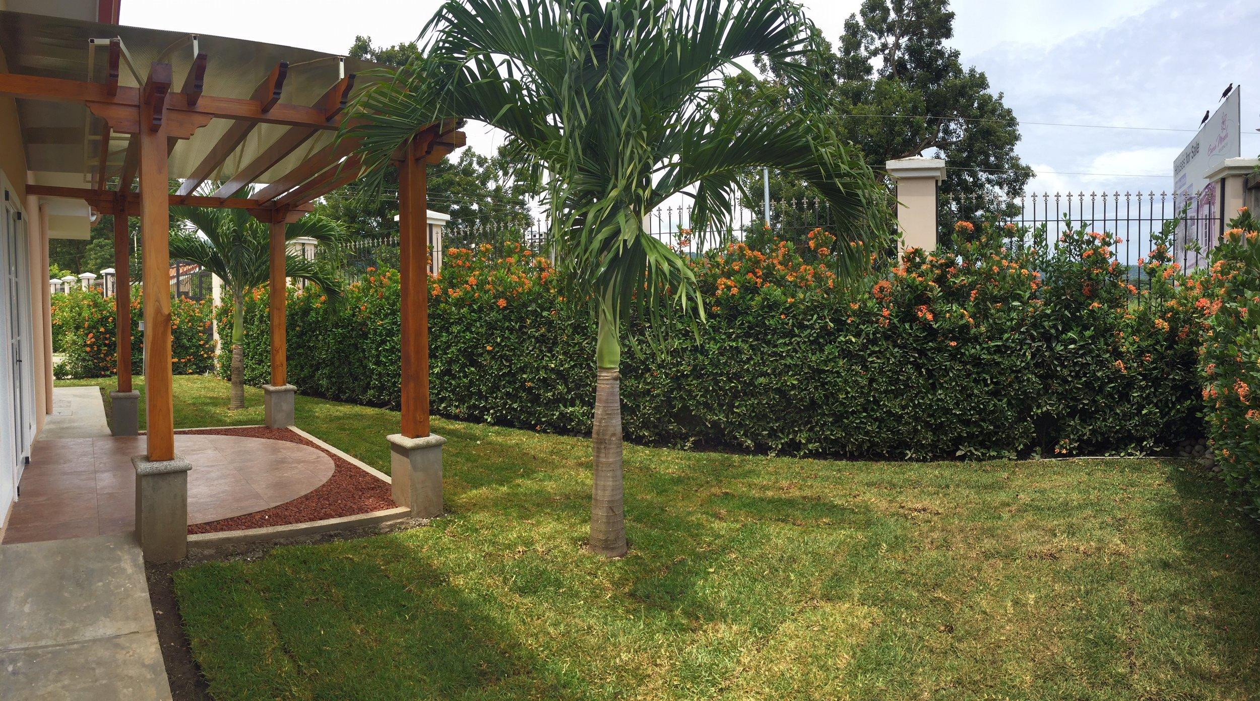 jardin4.JPG