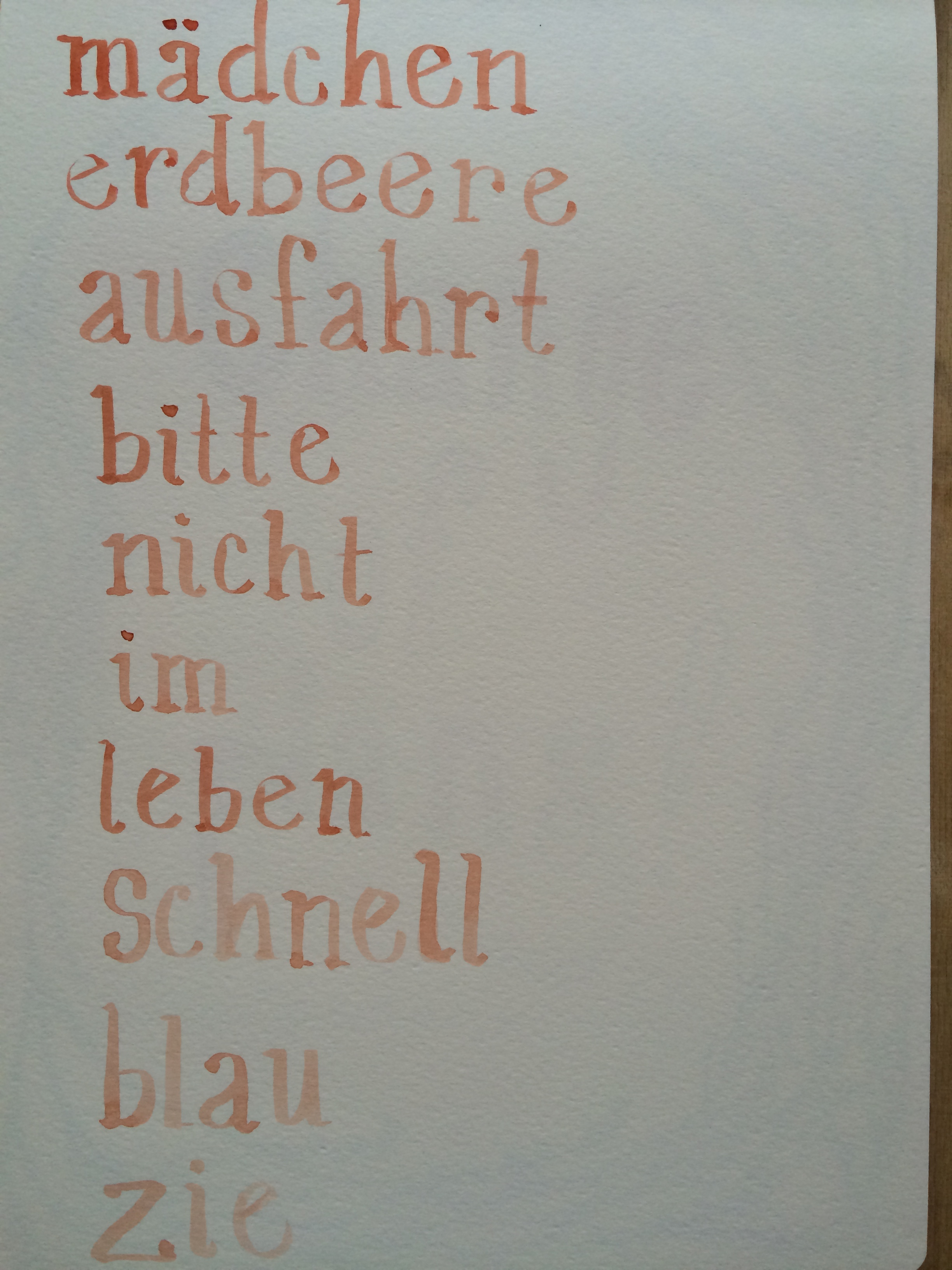 8/4/14  German words I know