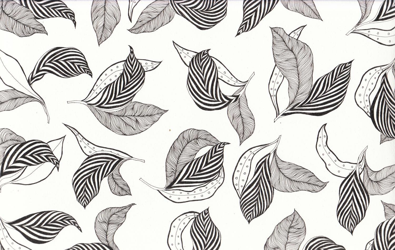 leavesMAIN.jpg