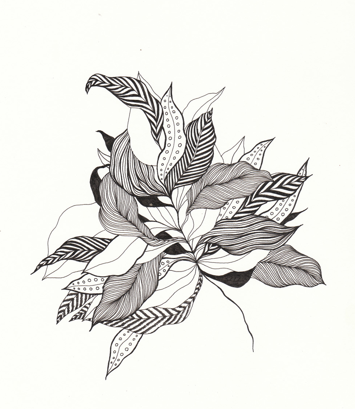"""Branch I, 9"""" X 12"""", ink on paper, 2012"""