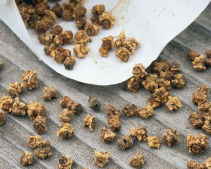beet-seeds.jpg