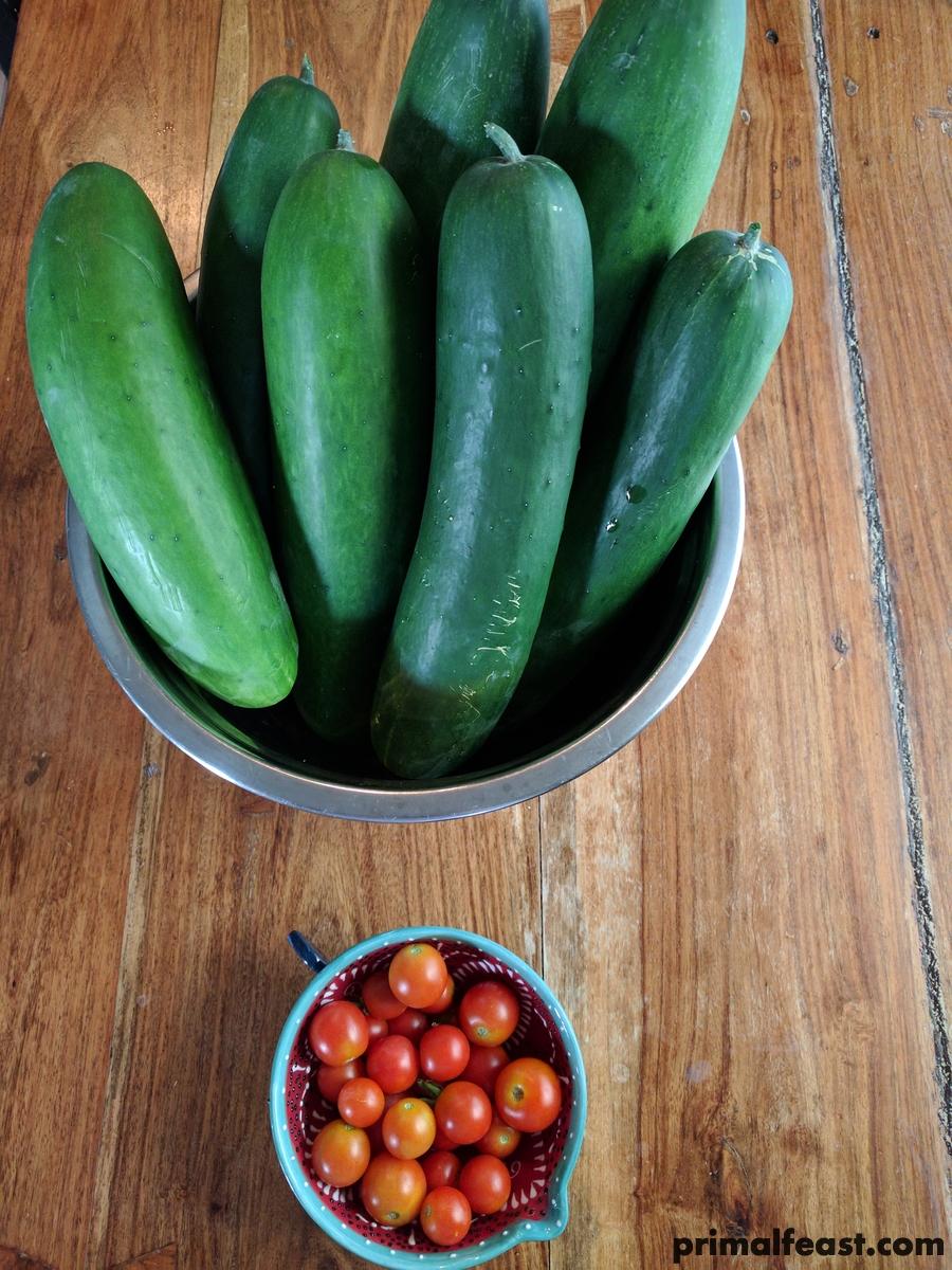 2017 0708 cucumbers and tomato.jpg