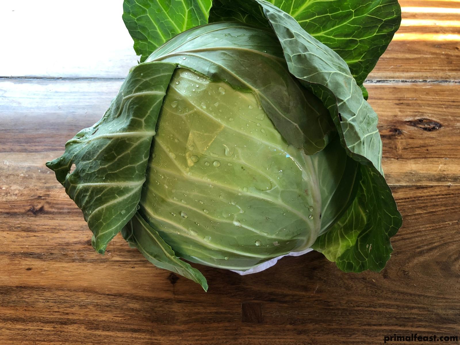 2018 0108 cabbage 006.jpg