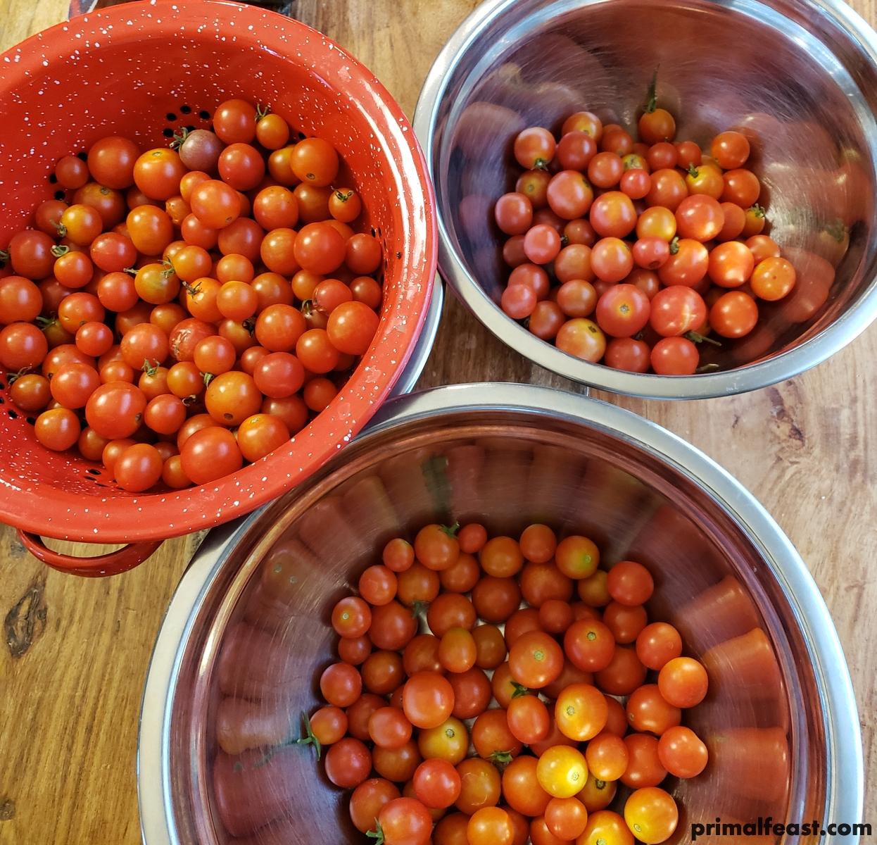 2018 0628 cherry tomatoes 002.jpg