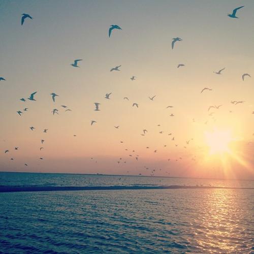 Sunset cruise off Rockport beach.