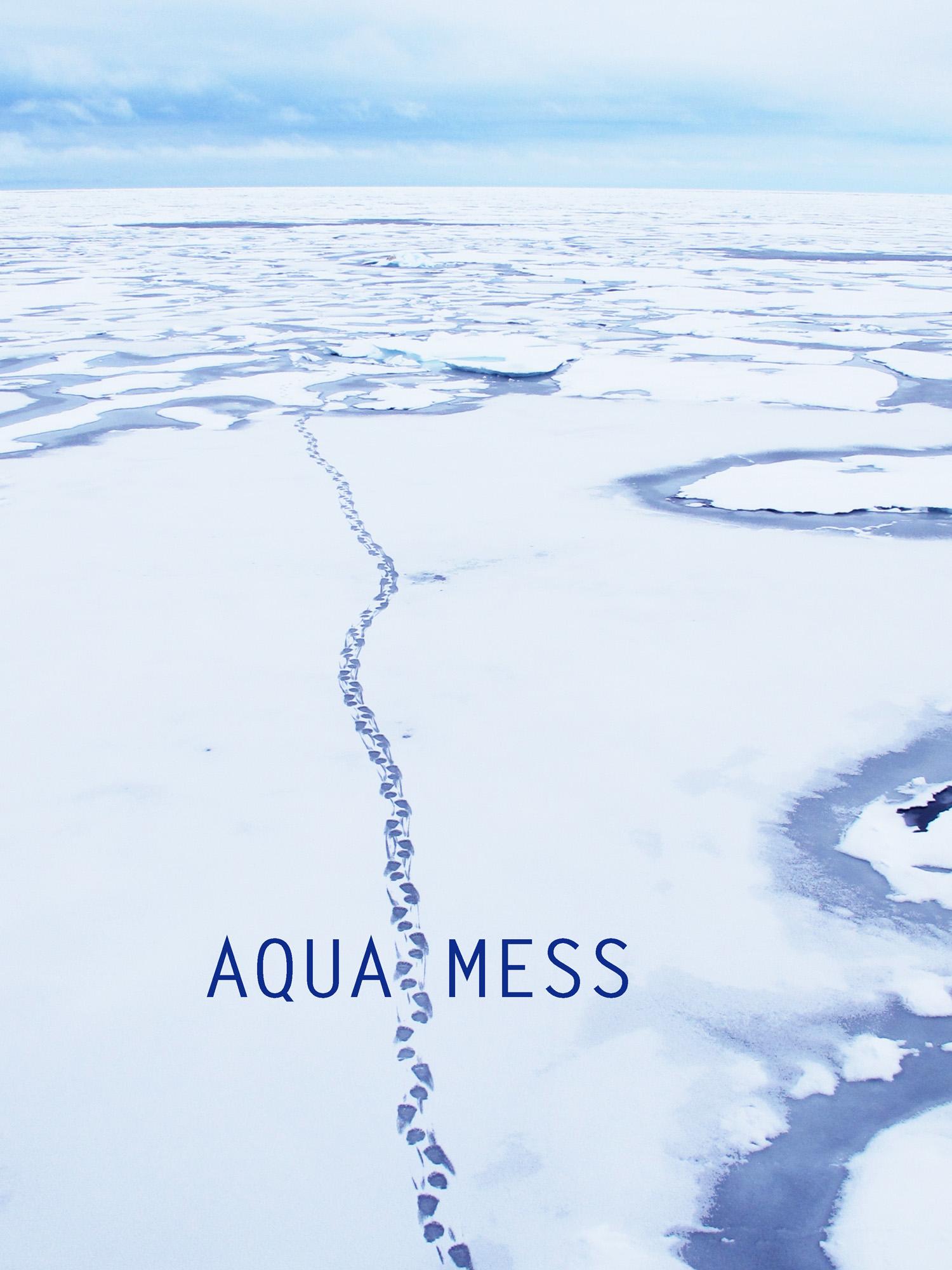 AquaMess Svalbard Carol Devine.jpg