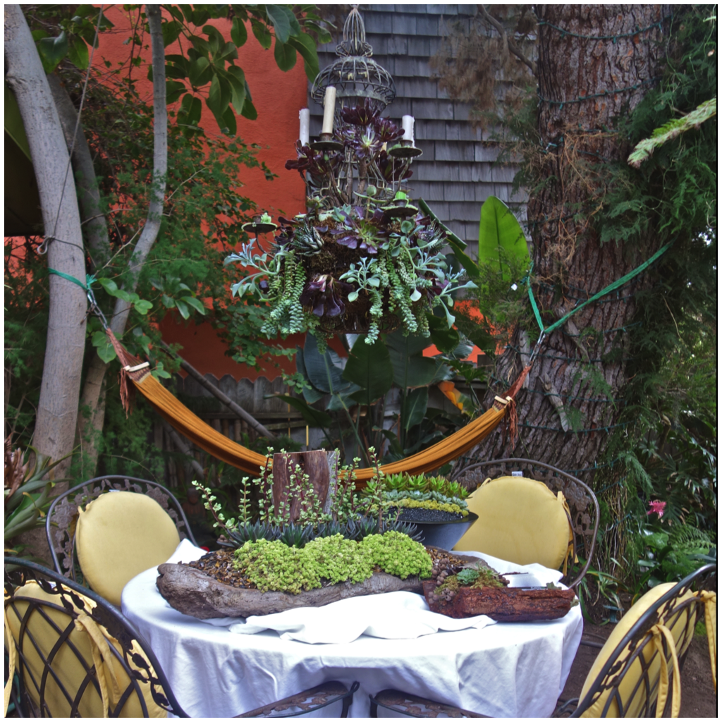 A cheerful garden table decked out with Planted Art arrangements. Note the chandelier adorned with succulents and candles.