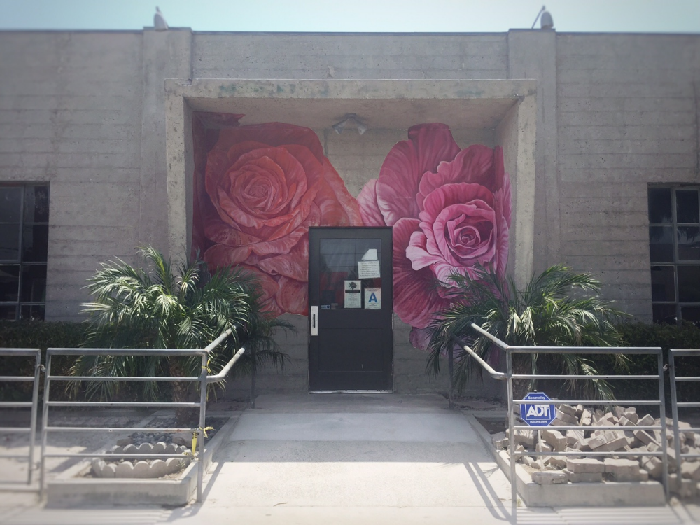 Pruned down to the studs for a total makeover, The Rose re-opens in late September with chef Jason Neroni at the helm.