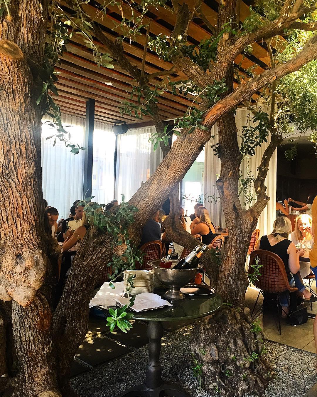 The Tasting Kitchen.  (Photo by Sara Tillotson  @santabarbarasara .)