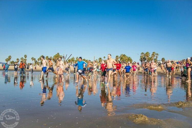 Venice Beach Penguin Swim ( Photo courtesy  Venice Beach Photos  )