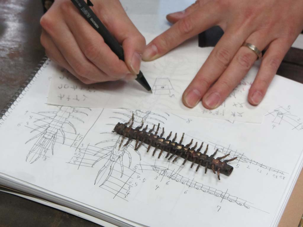 The centipede he was working on while we were there.
