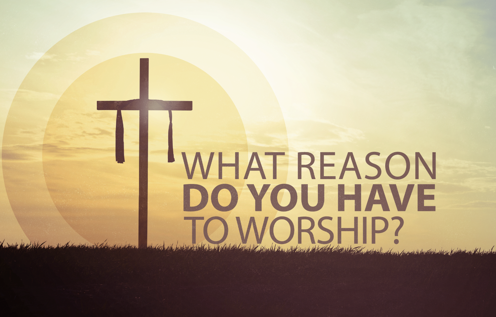 What Reason Do You Have To Worship?.png