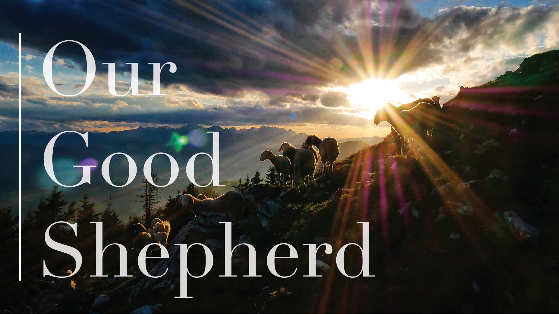 Our Good Shepherd-1920x1080.png