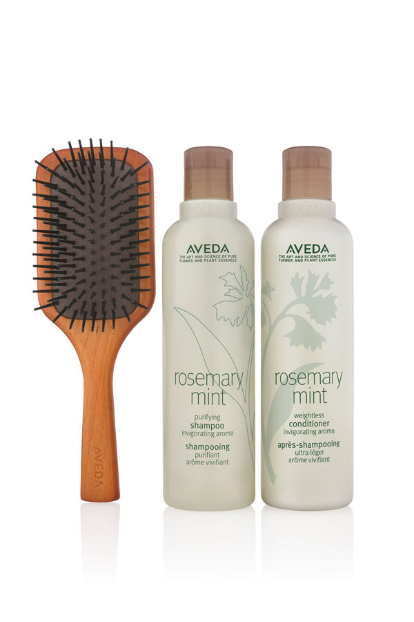 Rosemary Mint Invigorating Hair Care + Brush Set
