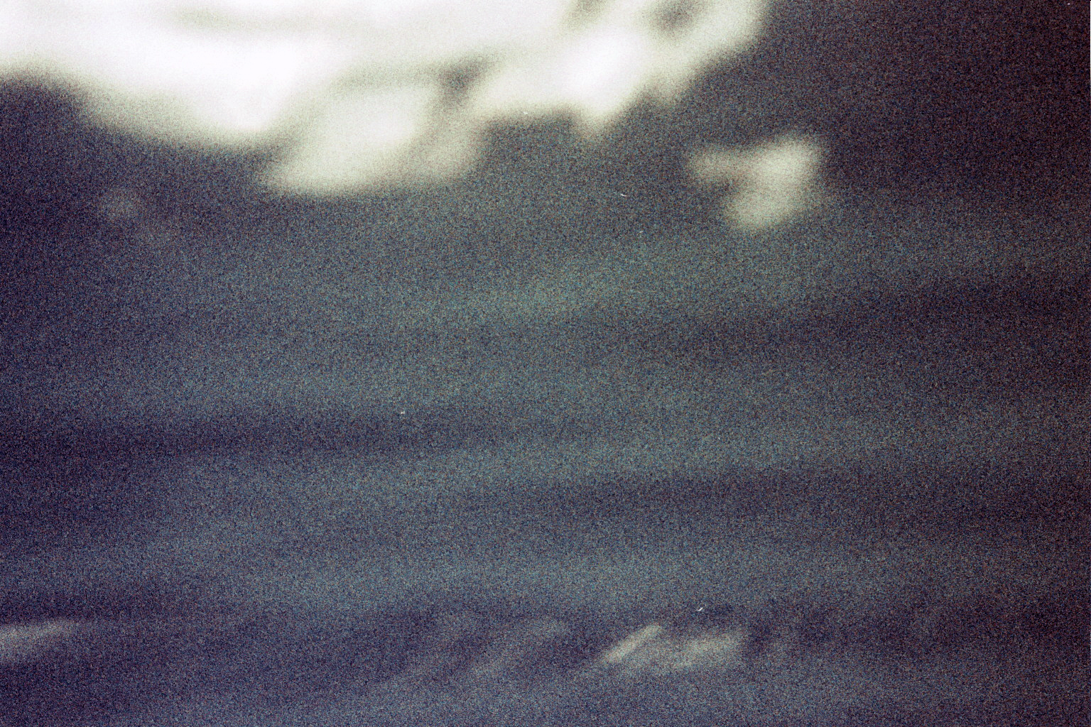 ---_0536b.jpg