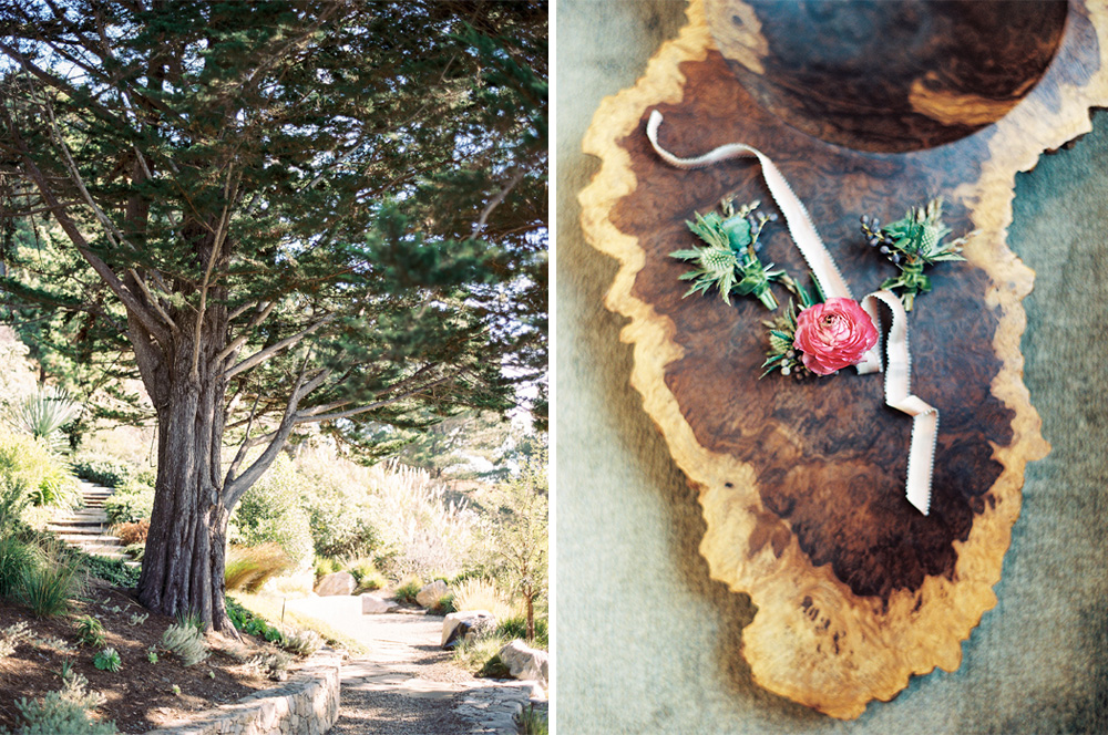 BIG-SUR-WEDDING-1.jpg