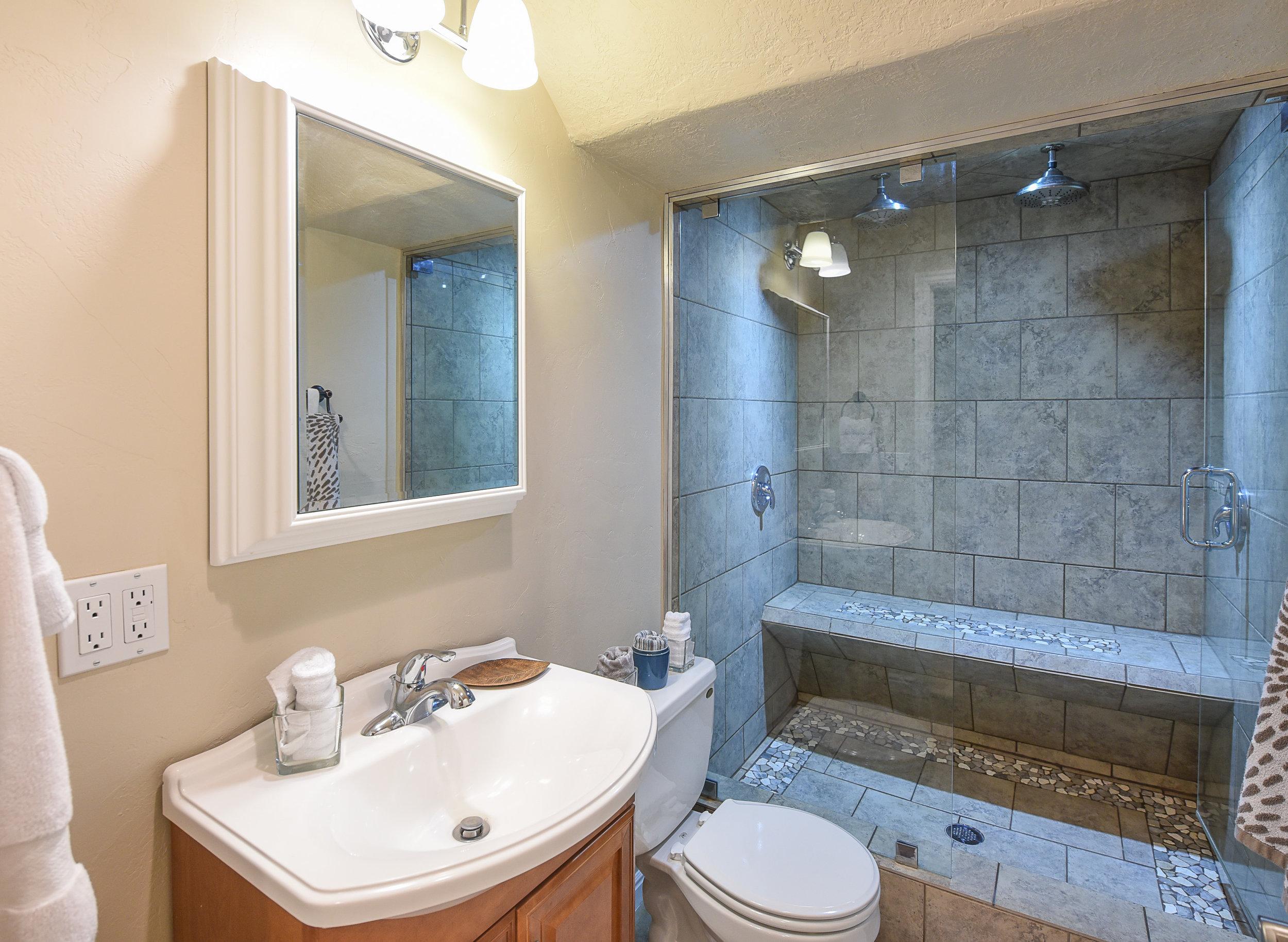 bathroom-bsmt.jpg