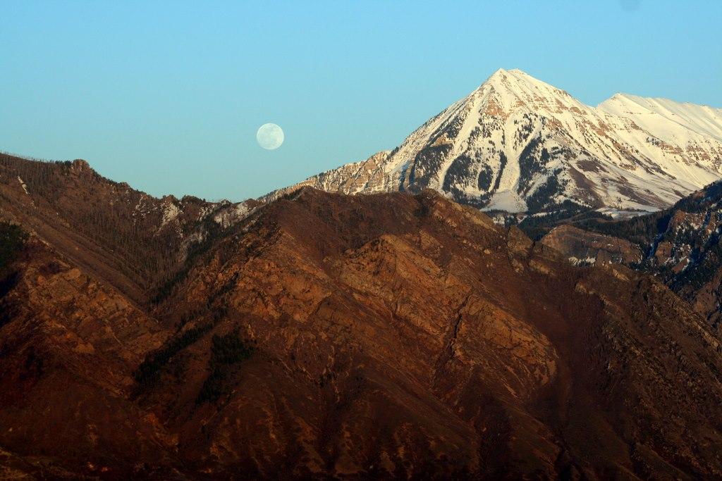 moonshot 1.jpg