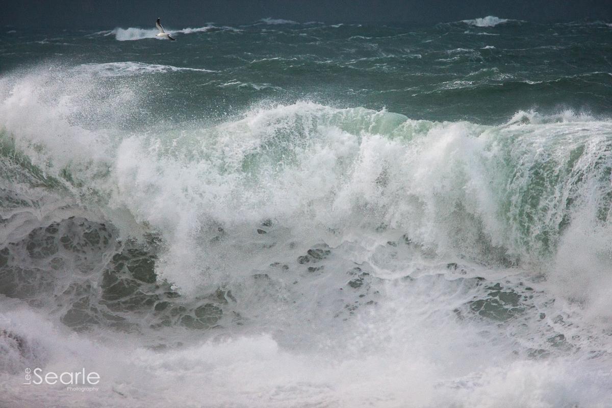 storm-sennen-lee-searle-9900.jpg