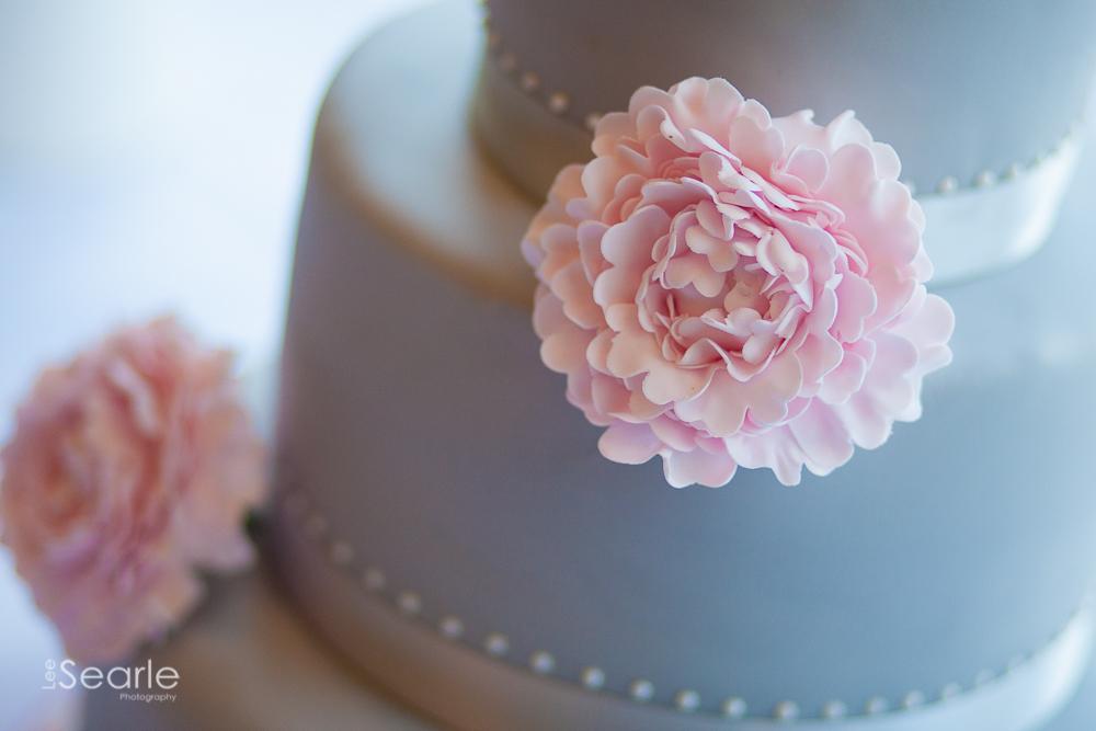 wedding-photographer-Cornwall-leesearle-12.jpg