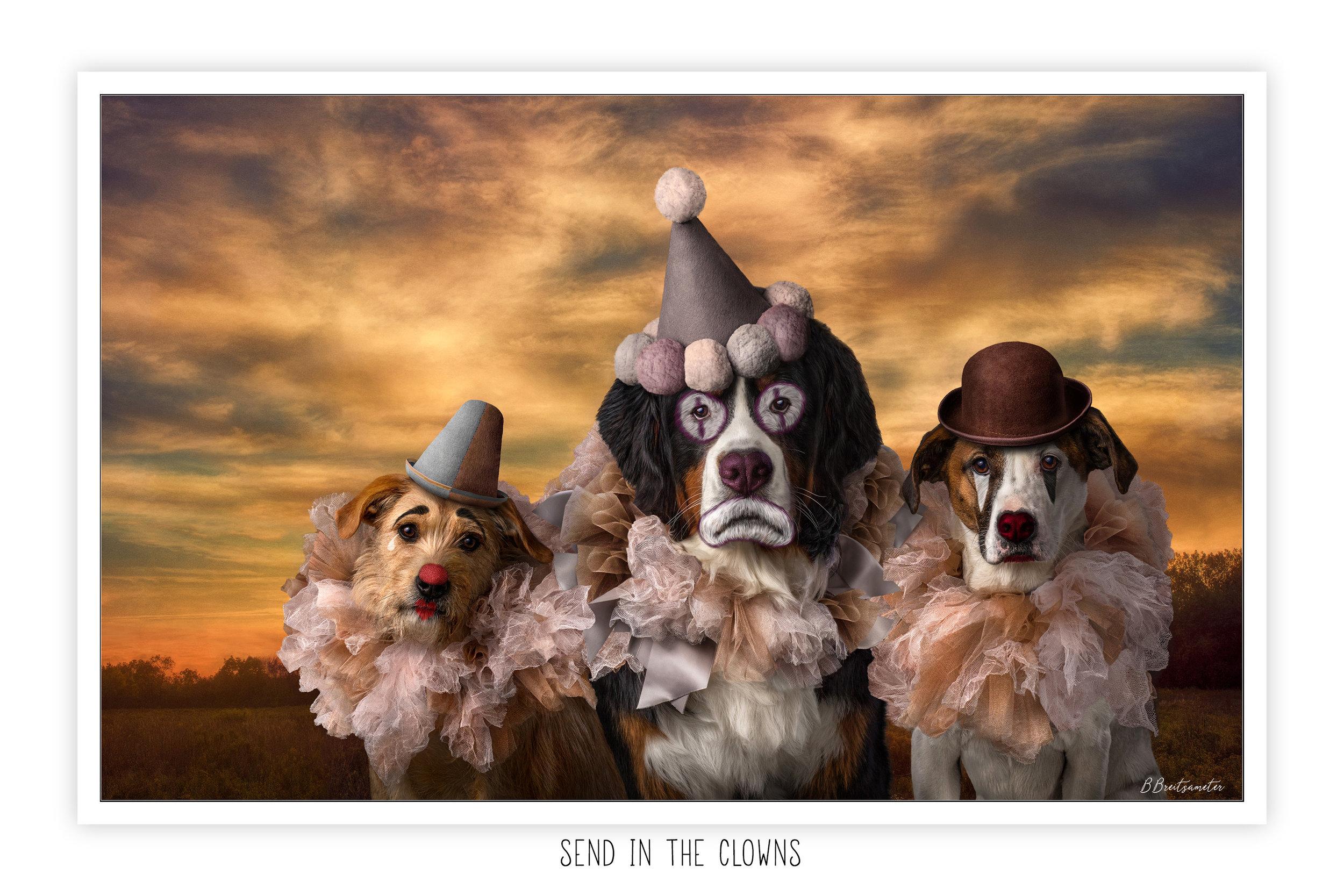 website_Send-in-the-clowns_barbara-breitsameter.jpg