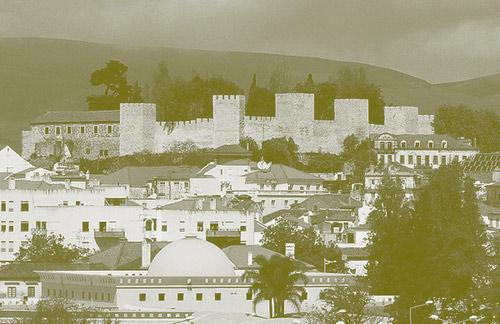 Castelo-Torres-Novas.jpg