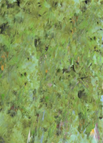 TURACOT Green  RUG w.jpg