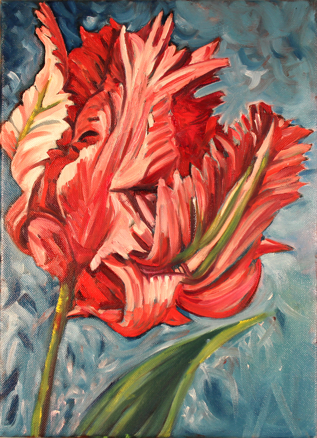 Fantasy Double Tulip . Oil on Canvas. 11 x 14 inches