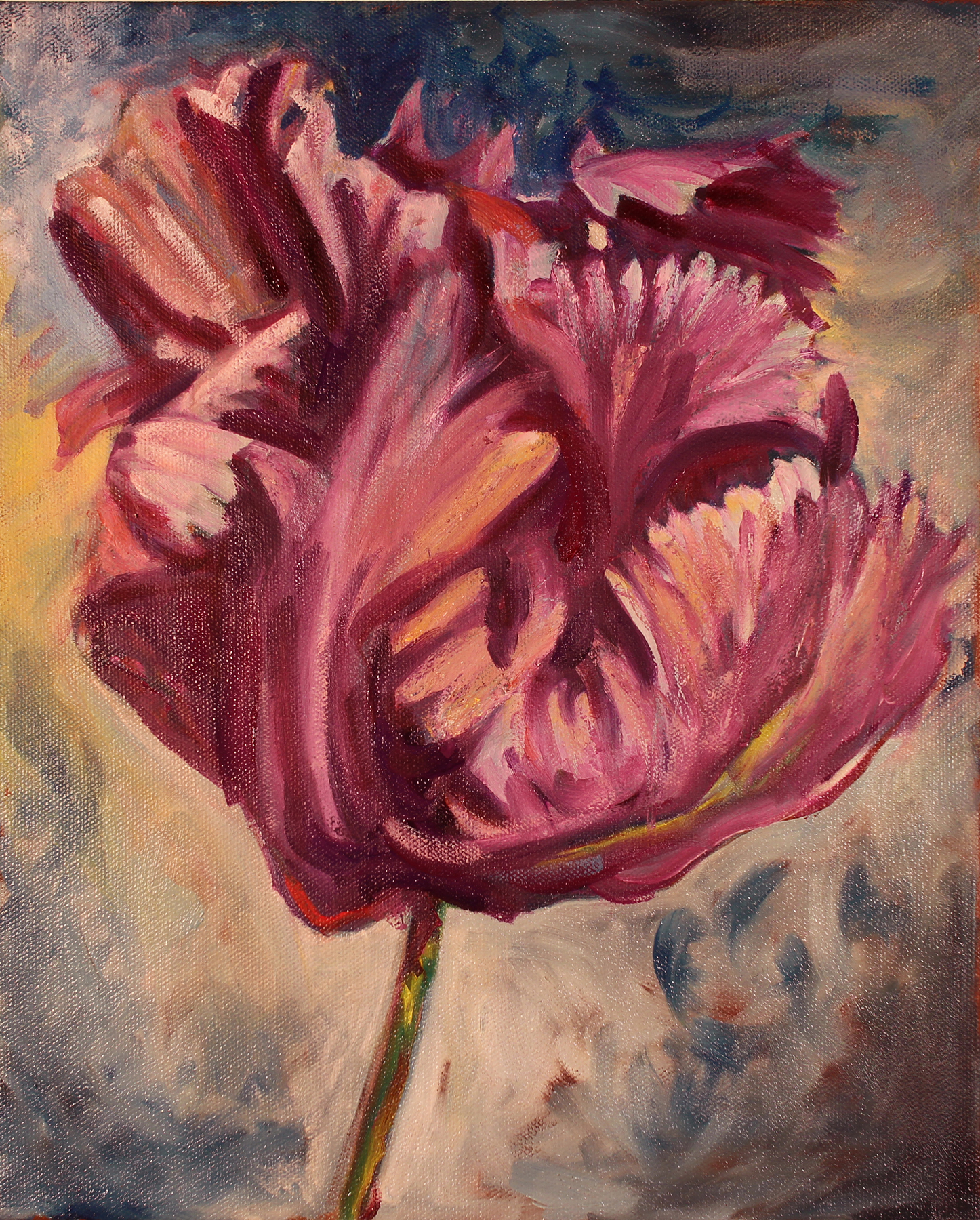 Gallan Double Tulip . Oil on Canvas. 11 x 14 inches