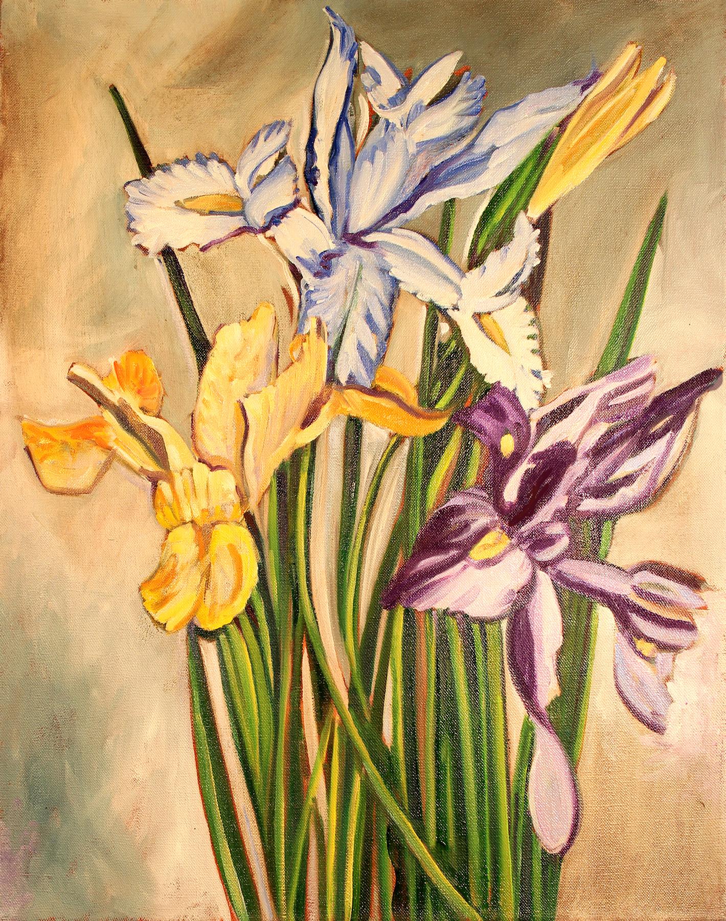 Iris Xiphium hybridum (Dutch) . Oil on Canvas. 16 x 20 inches