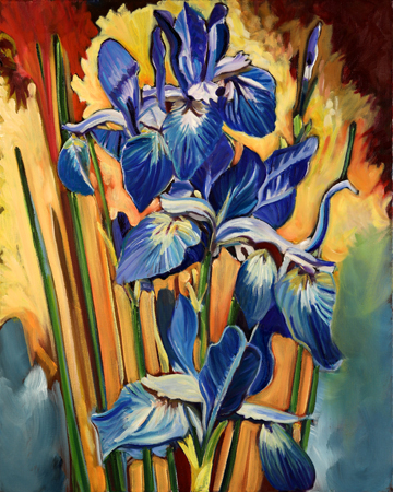 Iris Sibirica, Perry's Blue . Oil on Canvas. 16 x 20 inches