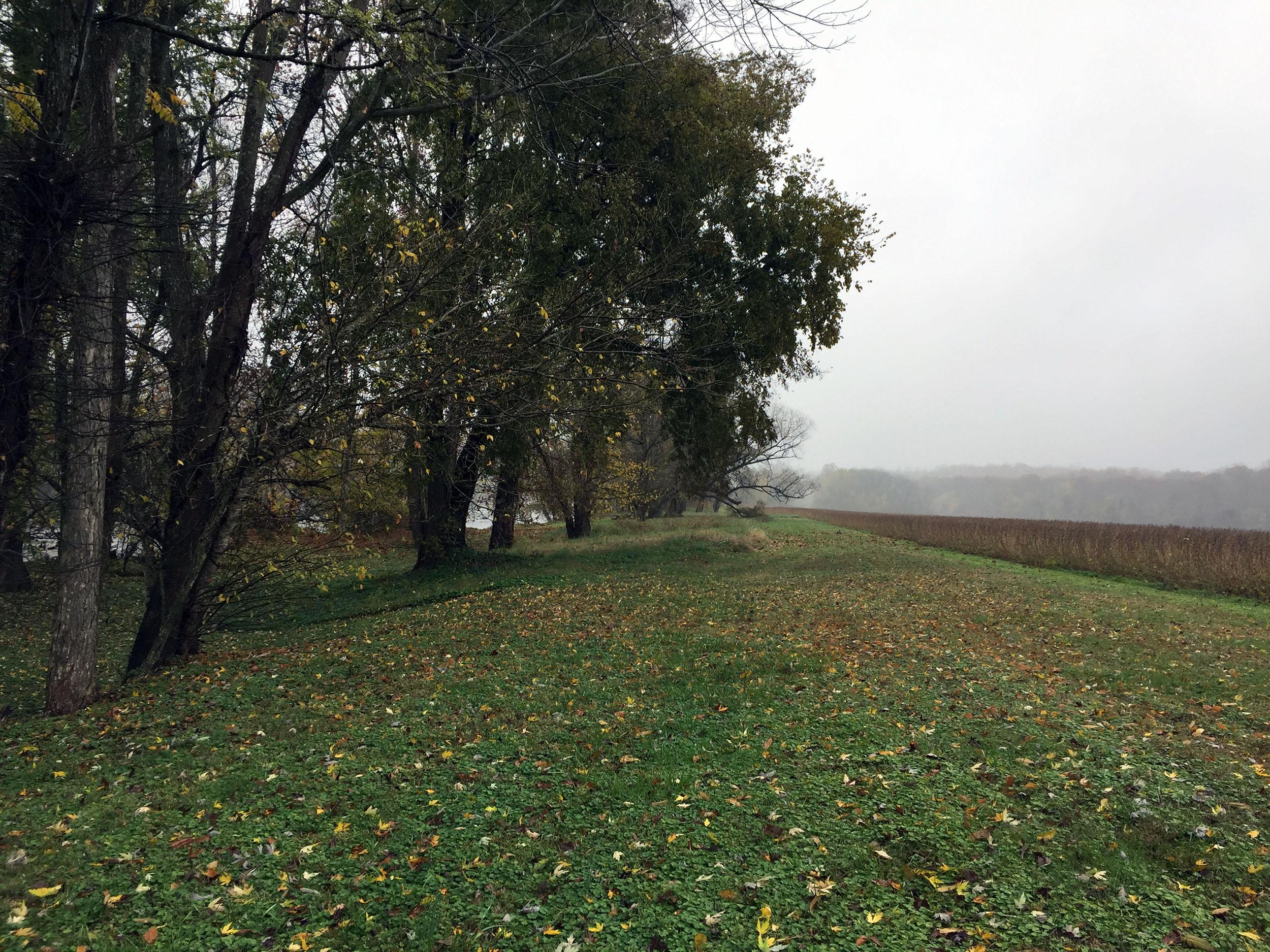James-River-field.jpg