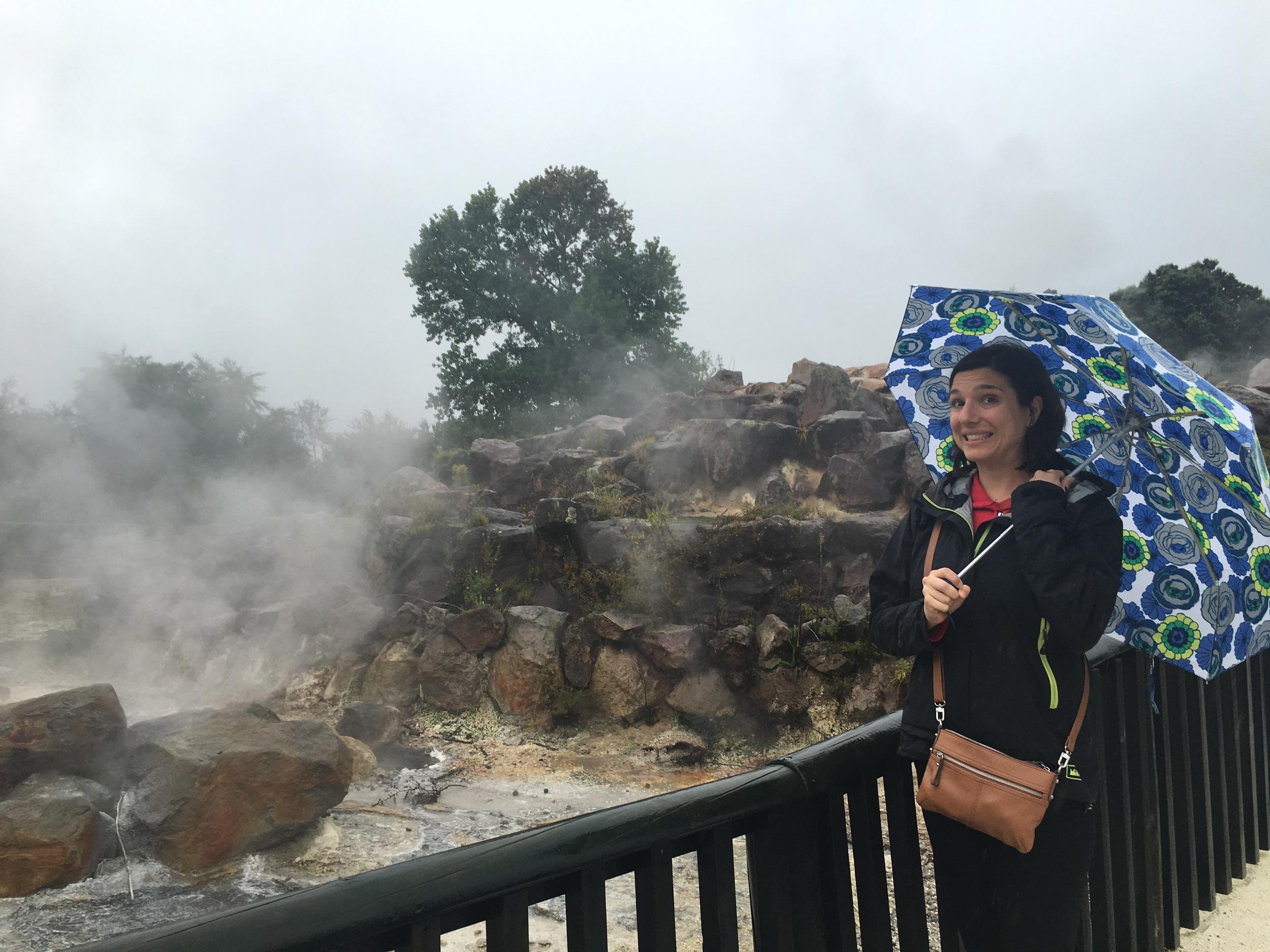 bubbling muddy sulphor-hotsprings in Rotorua