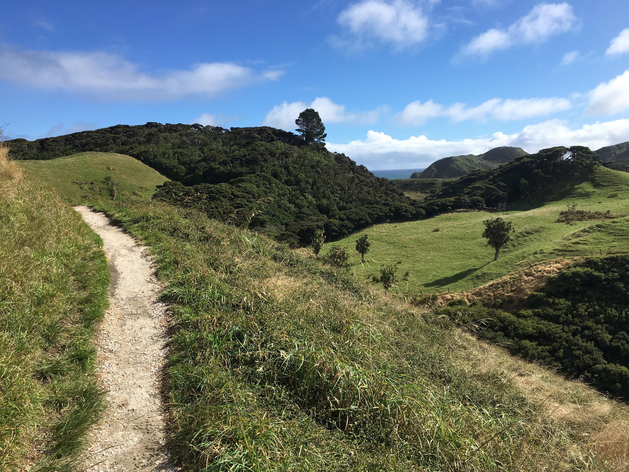 Land of Hobbits, south island