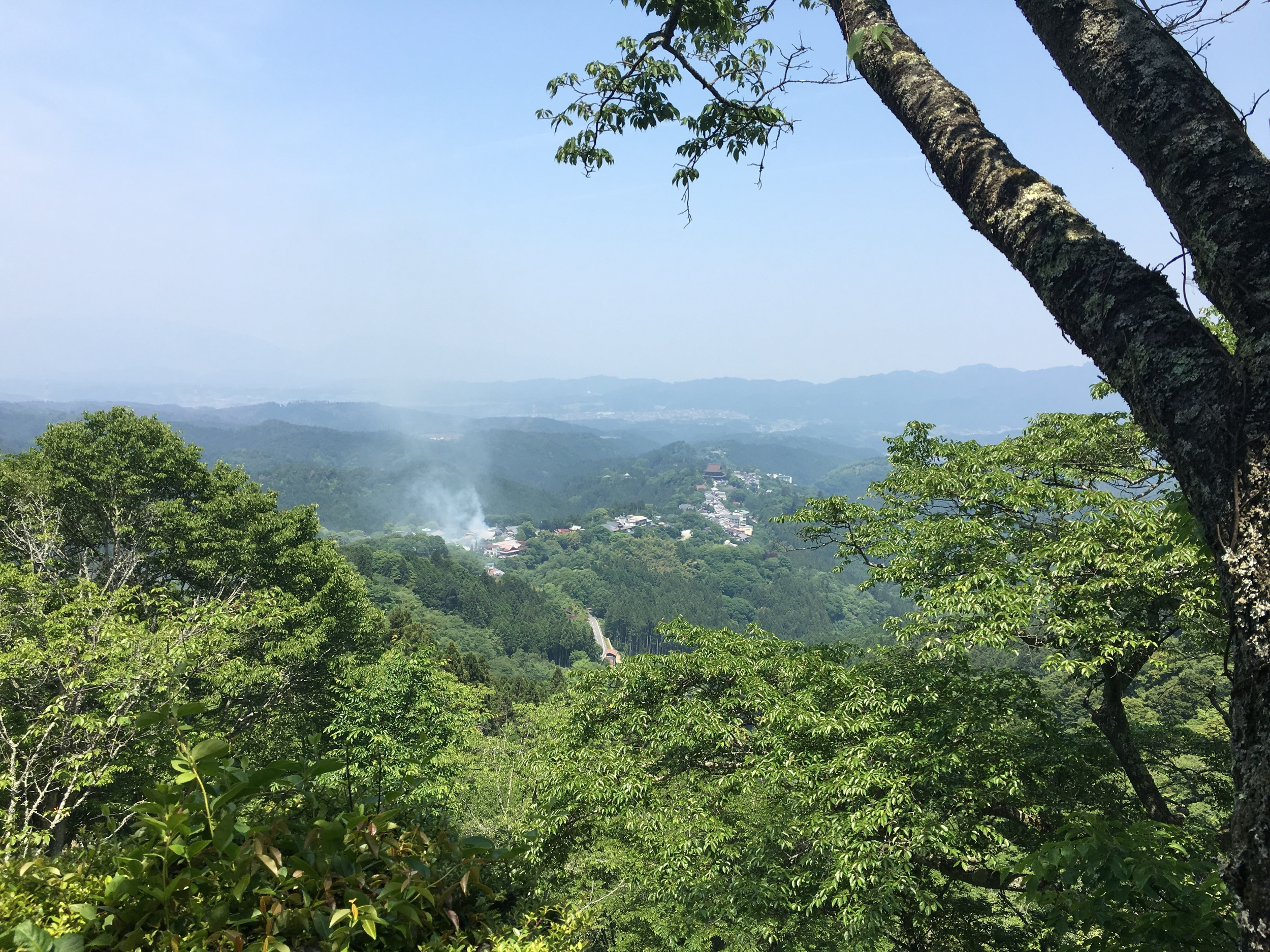 View of Yoshino from our so-so hike. That smoke in the distance is on-purpose temple related. I think.