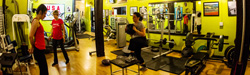 Sparrow Athletic & Fitness  Personalized fitness training