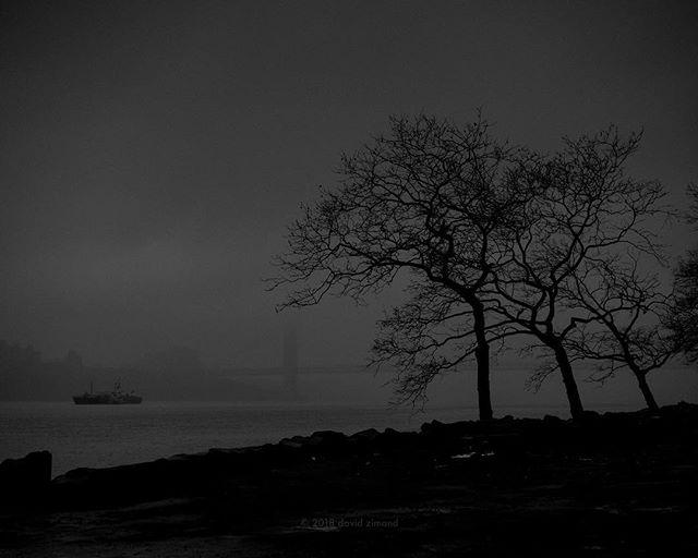 NYC #nyc #fog #nyny #davidzimand #davidzimandphotography #zeiss #otus #nycphotographer #bnw #blackandwhite #blacknwhite_perfection #blackandwhitelandscape