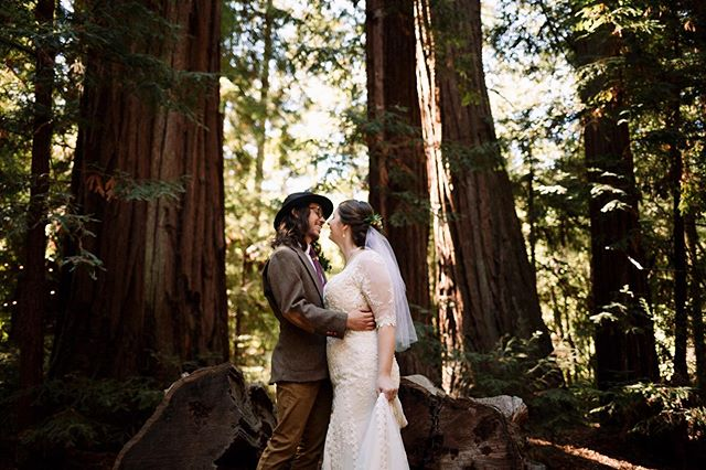 I think the groom should have accessories too! Brett's hat was the perfect addition to his whole look and to be honest it made the photos that much better! ✨⠀ Side note, I day dream about this Redwoods wedding all the time! California, you're magical!