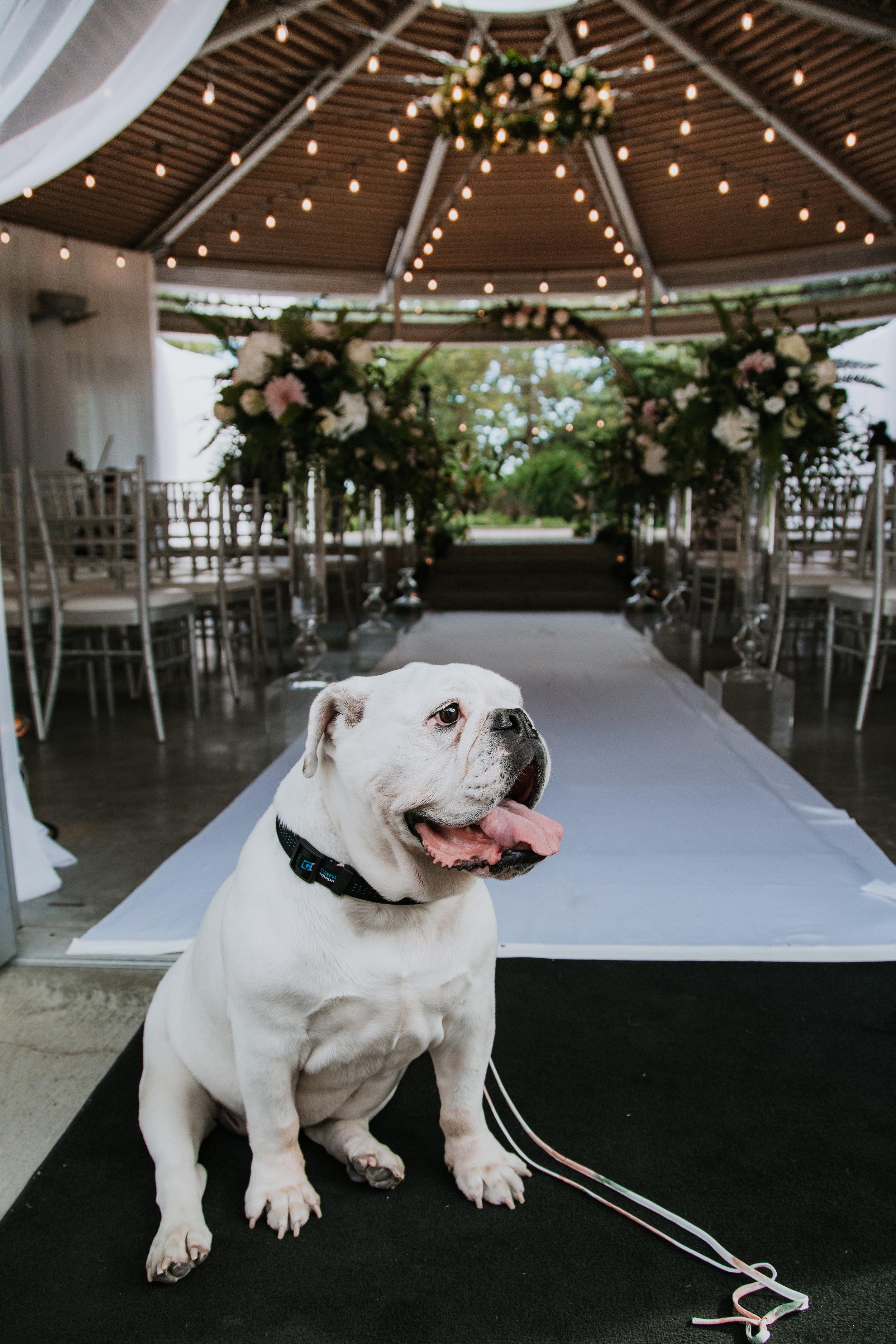 Jake & Coco Wedding-234.jpg