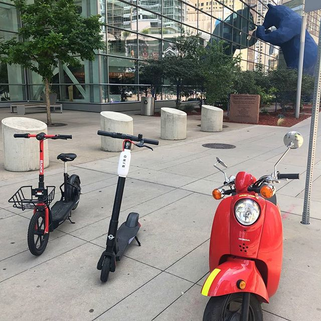 Fun. Funner. Funnest. We will train you how to ride our Vespas. It is way more fun.  #CuterOnAScooter #scootdenver #scooter #bigkidscooters #thingstodoindenver #visitdenver #milehighcity #bird #lime #uber #lyft #spin #razor #scoot