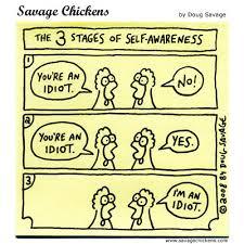 self awareness chicken.jpg